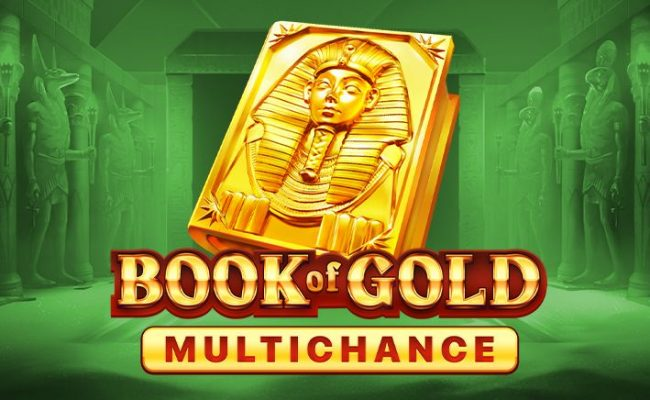 Slot-machines-Book-Of-Gold-Multichance